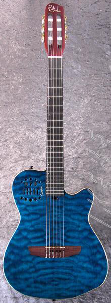 Godin_ACS_Limited_Edition.jpg